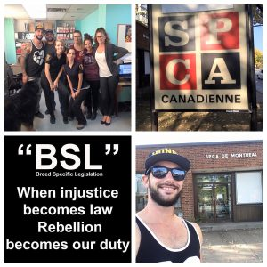 2016  Montreal END BSL Advocacy and Rescue Mission.