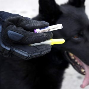 OPIOD OVERDOSES IN DOGS / NARCAN TREATMENT
