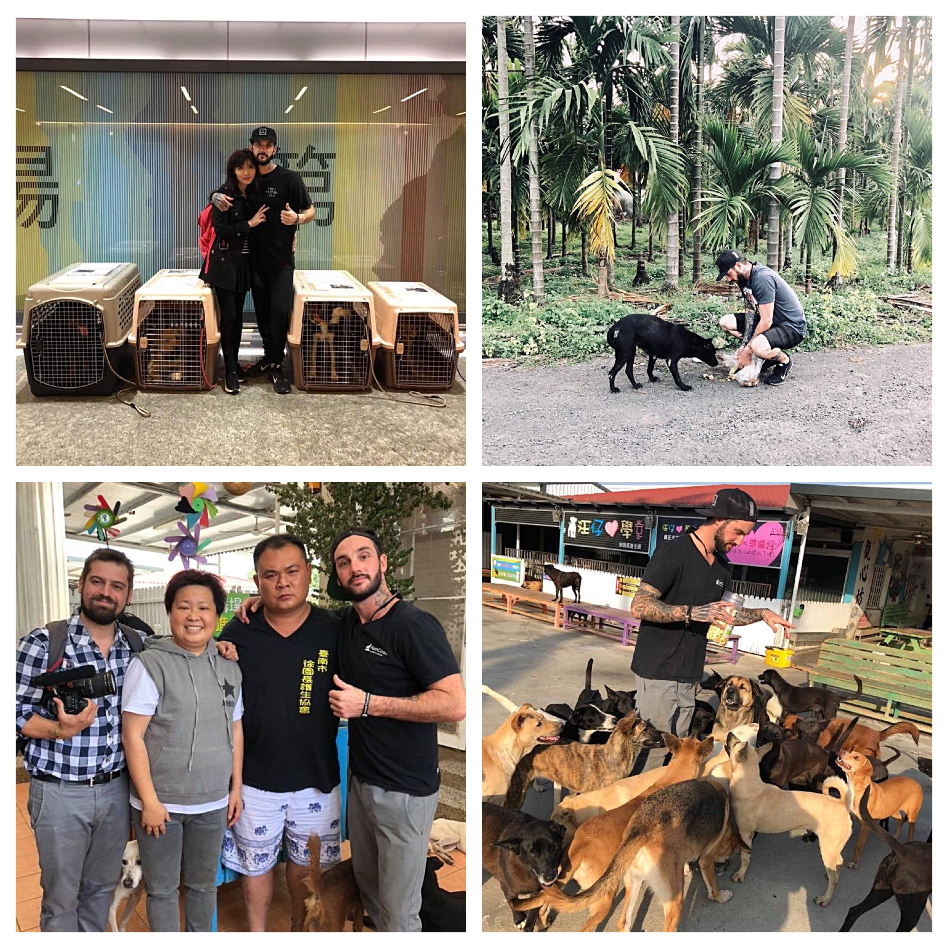 Taiwan Rescue and Awareness Mission 2018