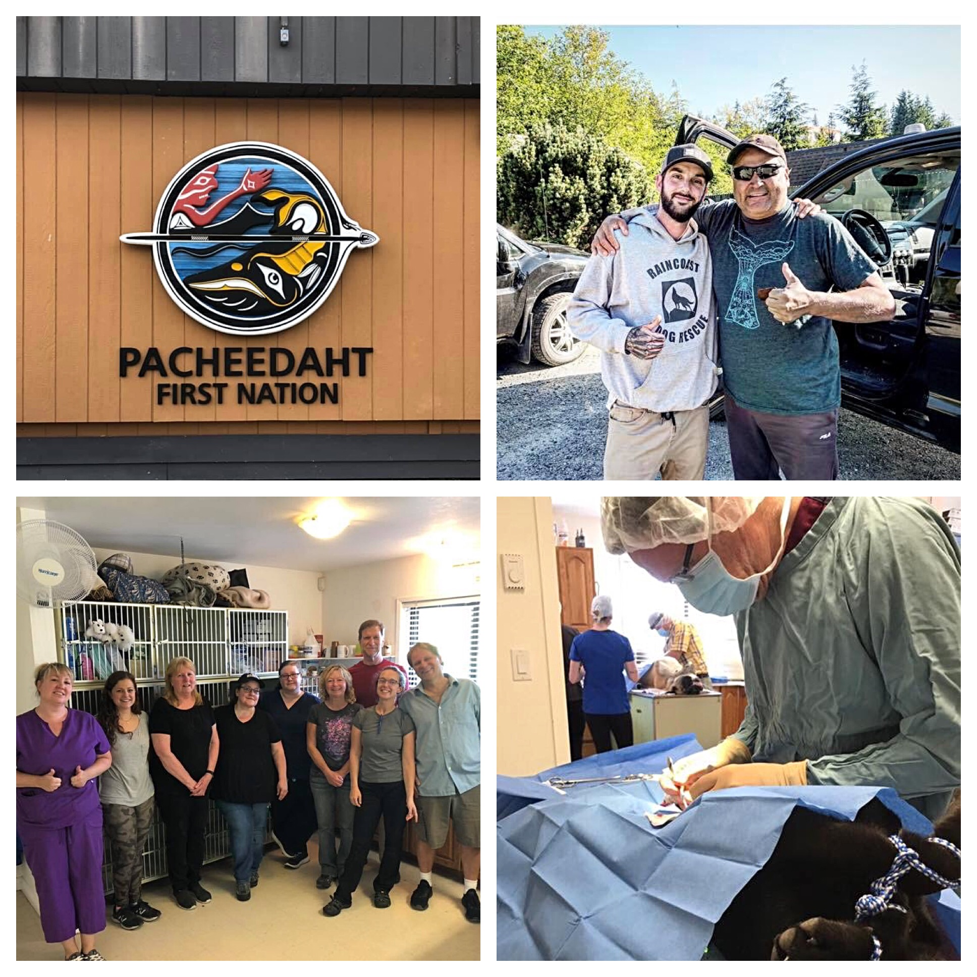 Pacheedaht First Nations Spay and Neuter Clinic 2019